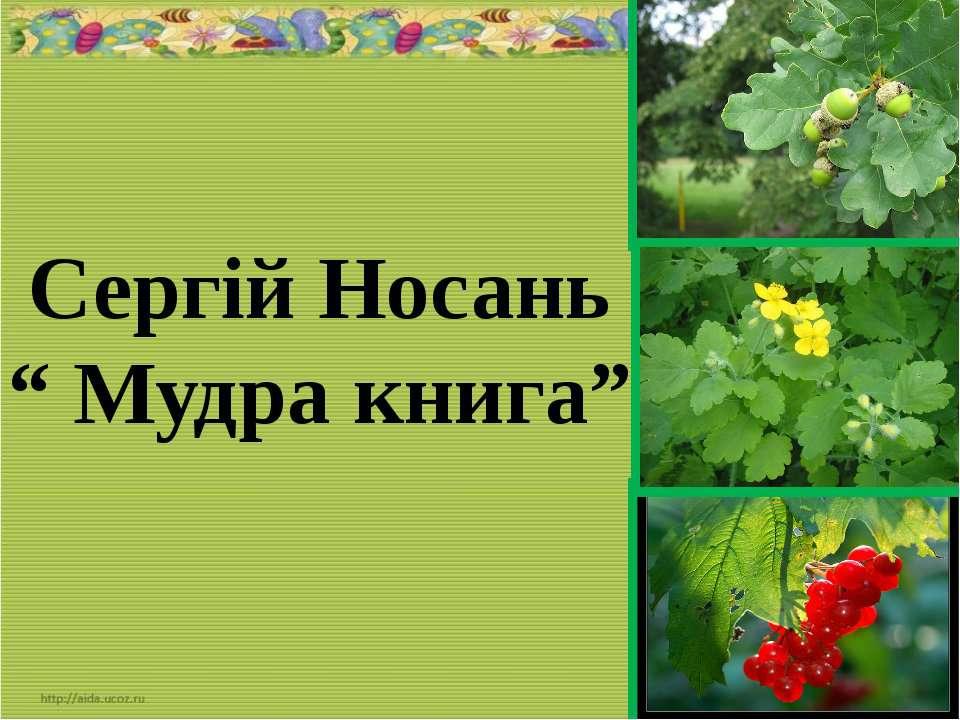 """Сергій Носань """" Мудра книга"""""""