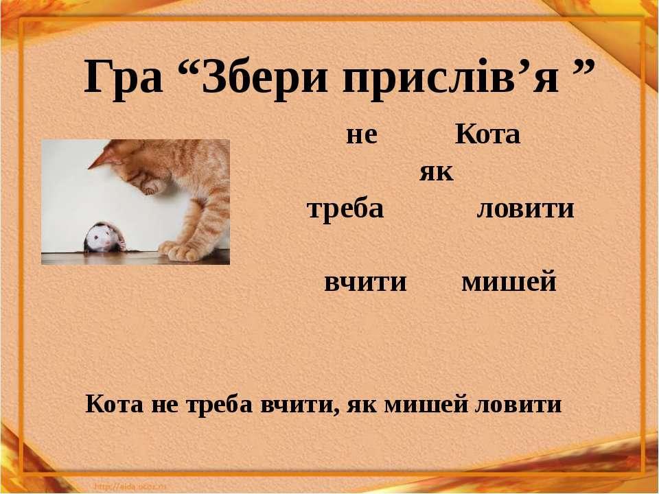 "не Кота як треба ловити вчити мишей Гра ""Збери прислів'я "" Кота не треба вчит..."