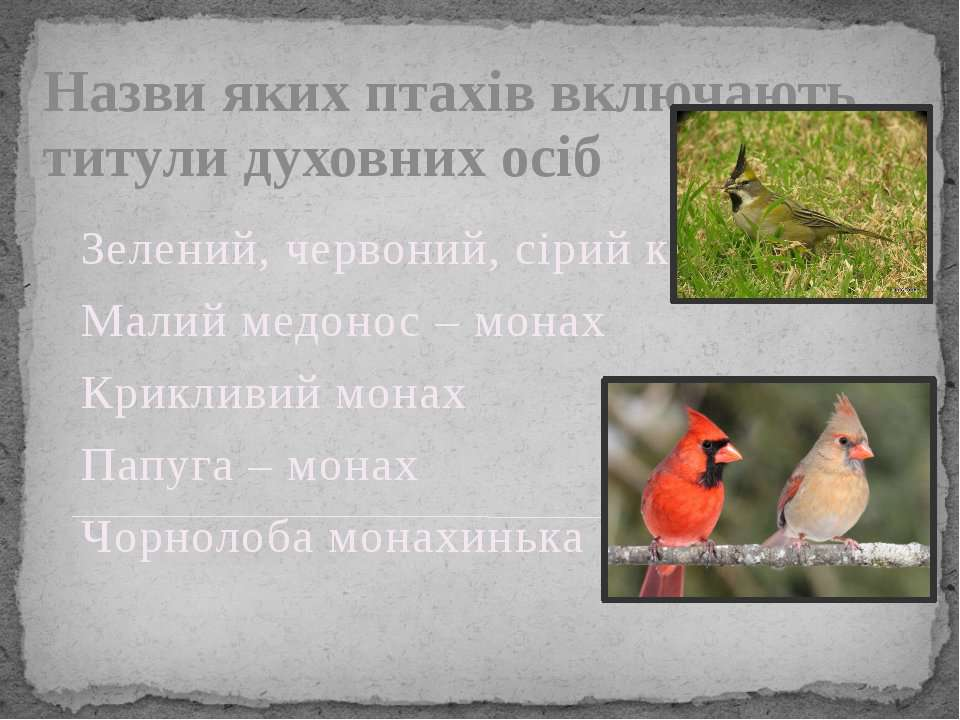 Назви яких птахів включають титули духовних осіб Зелений, червоний, сірий кар...