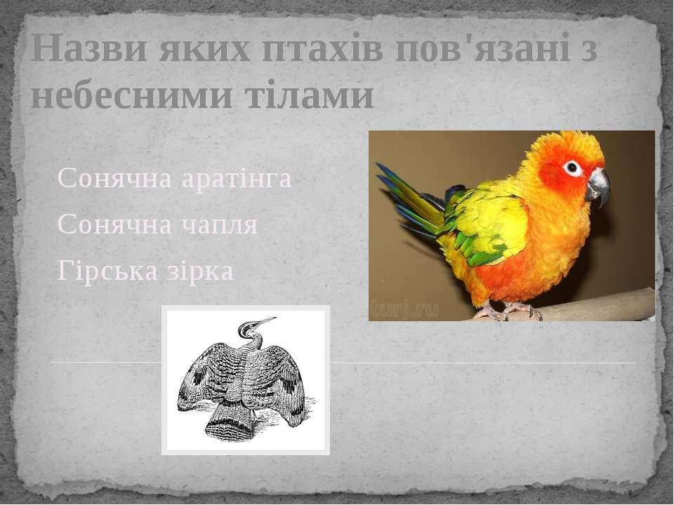 Назви яких птахів пов'язані з небесними тілами Сонячна аратінга Сонячна чапля...