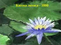 Квітка лотоса - 1000