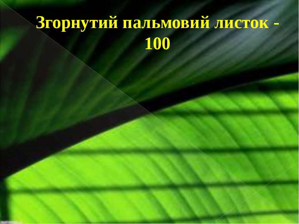 Згорнутий пальмовий листок - 100