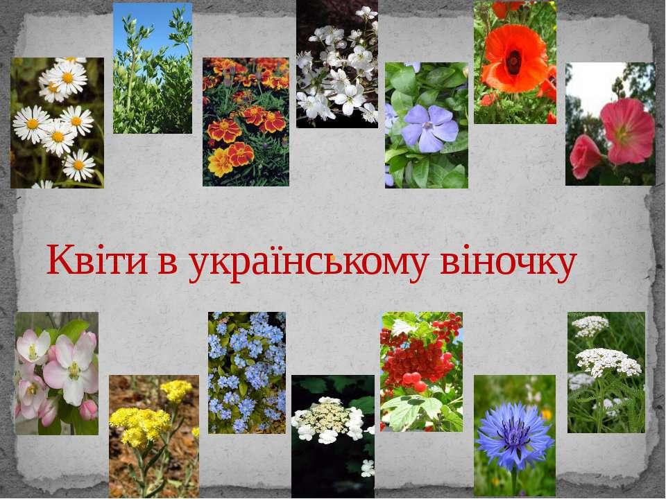 Квіти в українському віночку