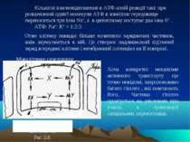 L+ Na+ цитоплазма Рис.3.8. Кількісні взаємовідношення в АТФ-азній реакції так...
