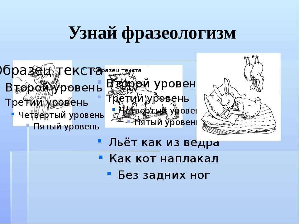 Узнай фразеологизм Льёт как из ведра Как кот наплакал Без задних ног