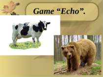 "Game ""Echo""."