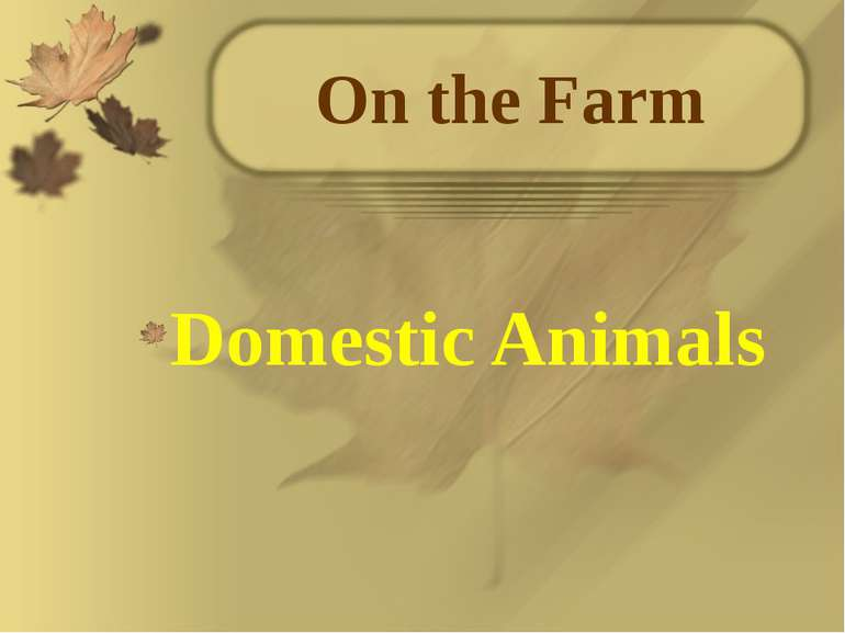 On the Farm Domestic Animals