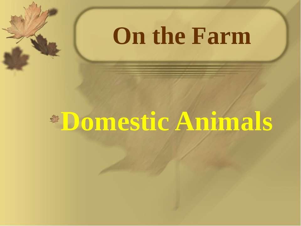 On the Farm Domestic Animals