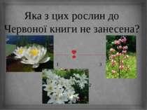 Яка з цих рослин до Червоної книги не занесена? 1 3 2