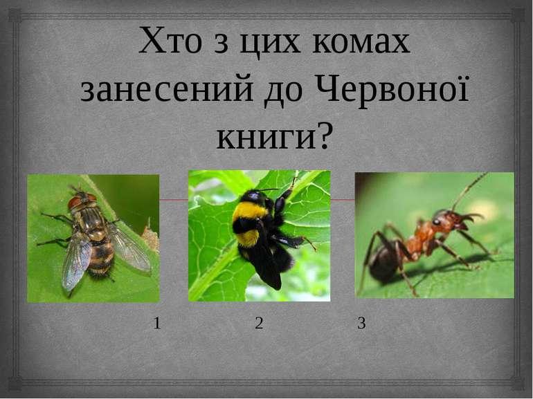 Хто з цих комах занесений до Червоної книги? 1 2 3