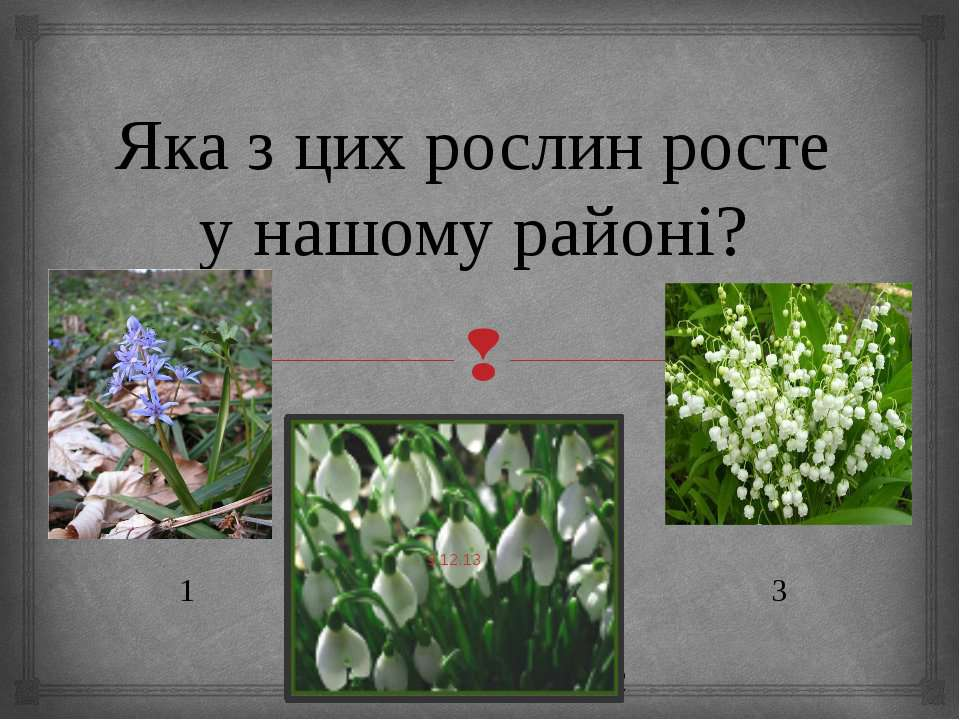 Яка з цих рослин росте у нашому районі? 1 3 2
