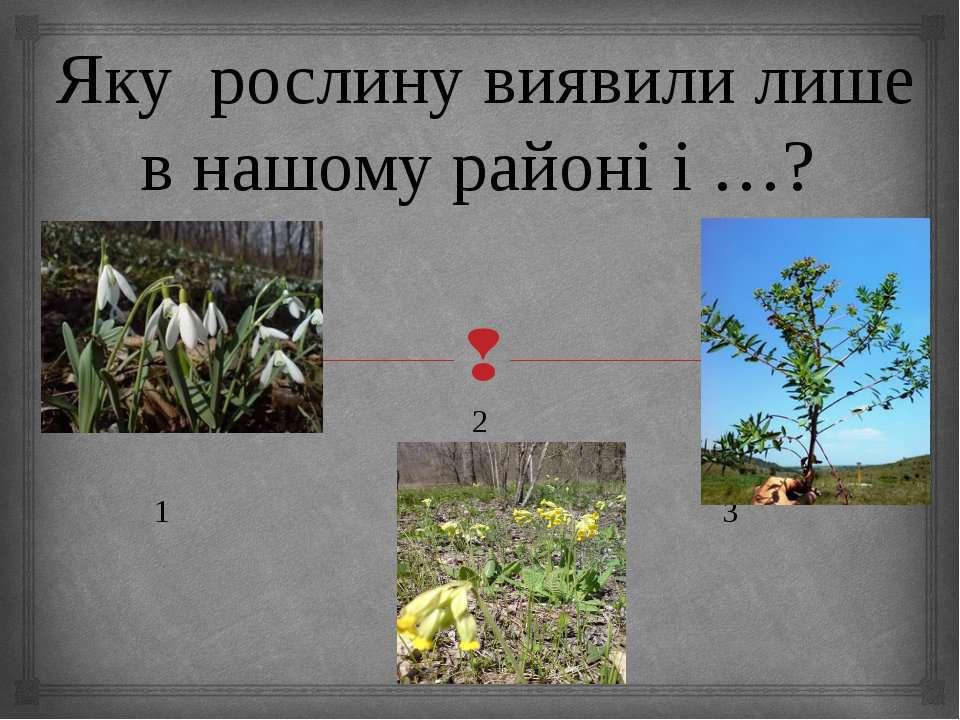 Яку рослину виявили лише в нашому районі і …? 2 1 3