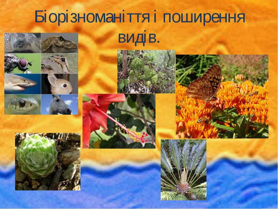 Біорізноманіття і поширення видів.