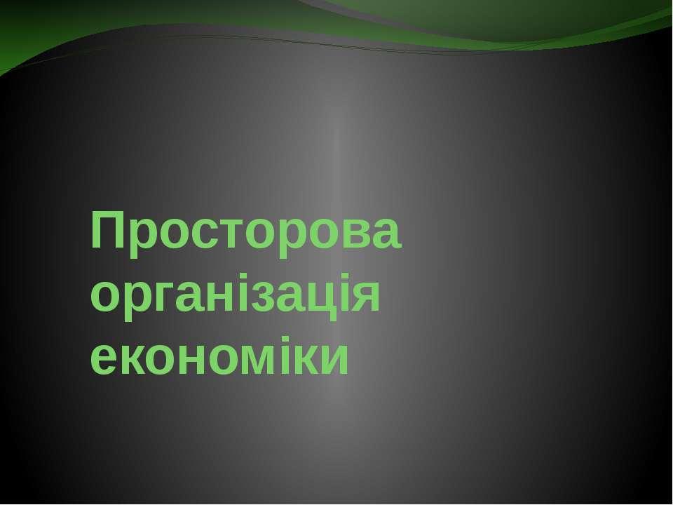 Просторова організація економіки