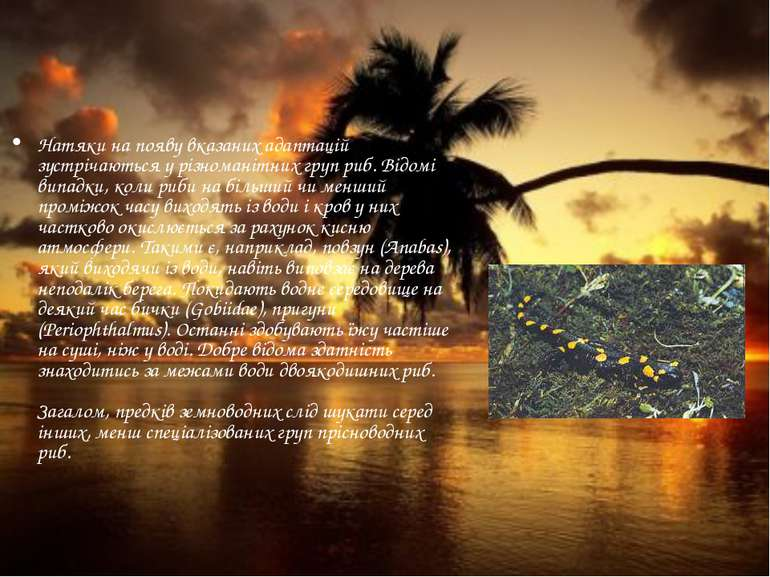 Натяки на появу вказаних адаптацій зустрічаються у різноманітних груп риб. Ві...