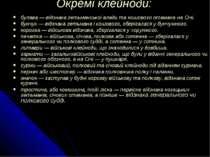 Окремі клейноди: булава — відзнака гетьманської влади та кошового отамана на ...