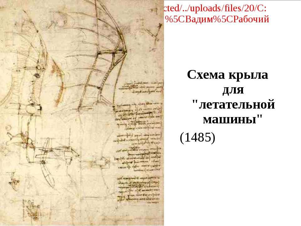 """Схема крыла для """"летательной машины"""" (1485)"""