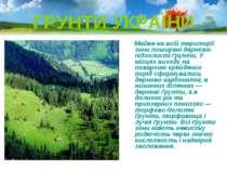 ГРУНТИ УКРАЇНИ Майже на всій території зони поширені дерново-підзолисті ґрунт...