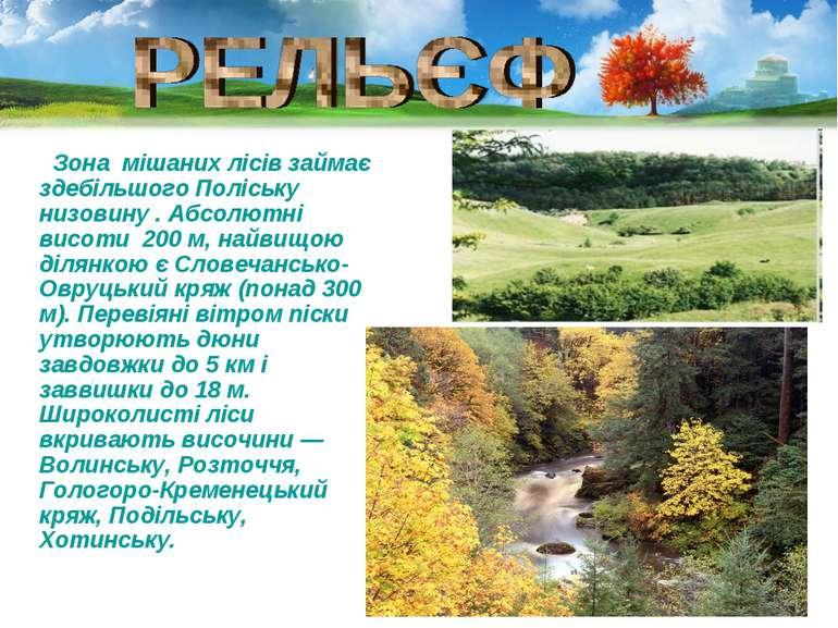 Зона мішаних лісів займає здебільшого Поліську низовину . Абсолютні висоти 20...