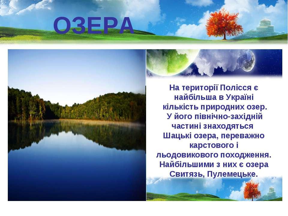 ОЗЕРА На території Полісся є найбільша в Україні кількість природних озер. У ...