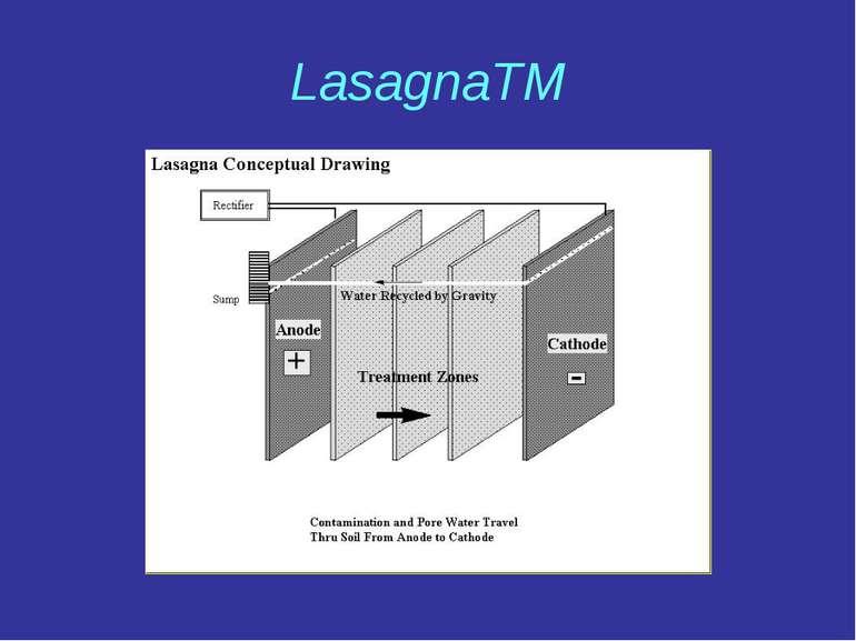 LasagnaTM