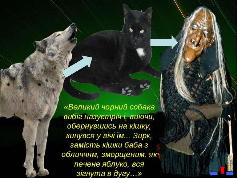 «Великий чорний собака вибіг назустріч і, виючи, обернувшись на кішку, кинувс...