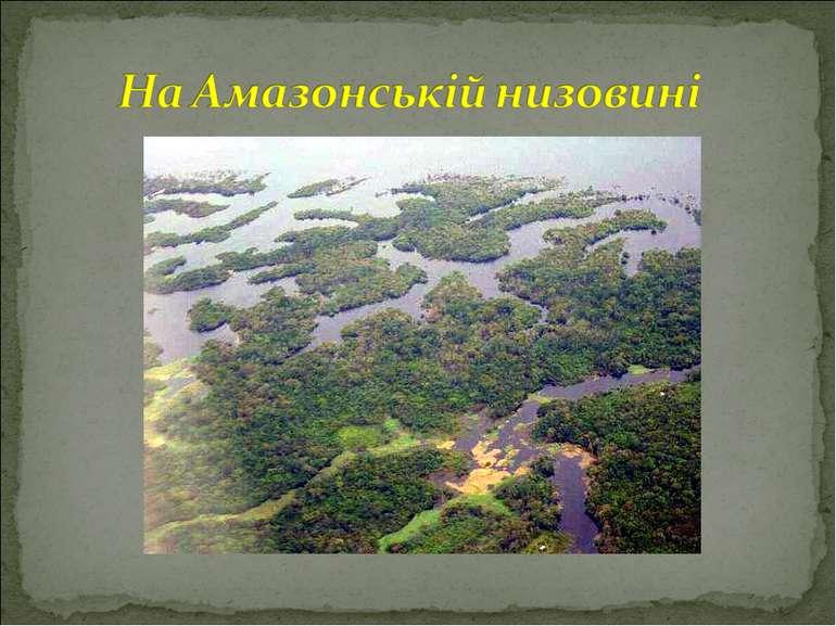 На Амазонській низовині