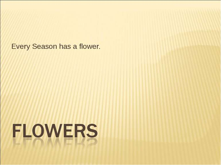 Every Season has a flower.