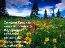 Сегодня Красная книга Российской Федерации является основным юридическим доку...