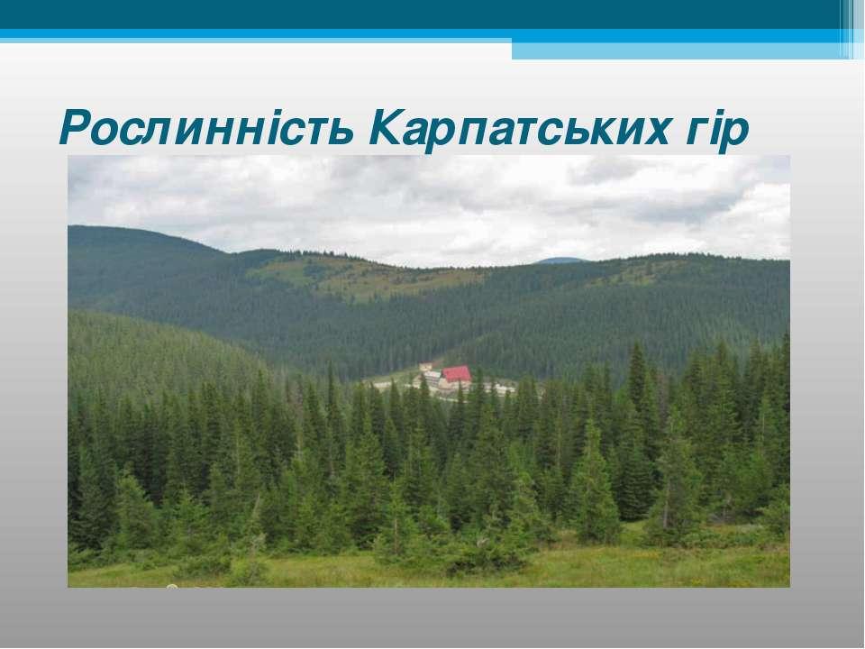 Рослинність Карпатських гір