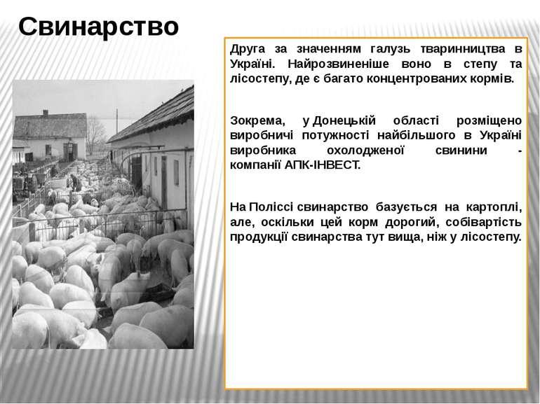 Друга за значенням галузь тваринництва в Україні. Найрозвиненіше воно в степу...