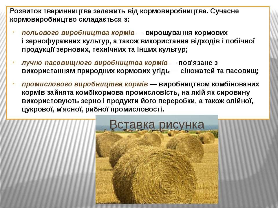 Розвиток тваринництва залежить від кормовиробництва. Сучасне кормовиробництво...
