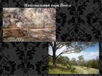 Національний парк Йенго