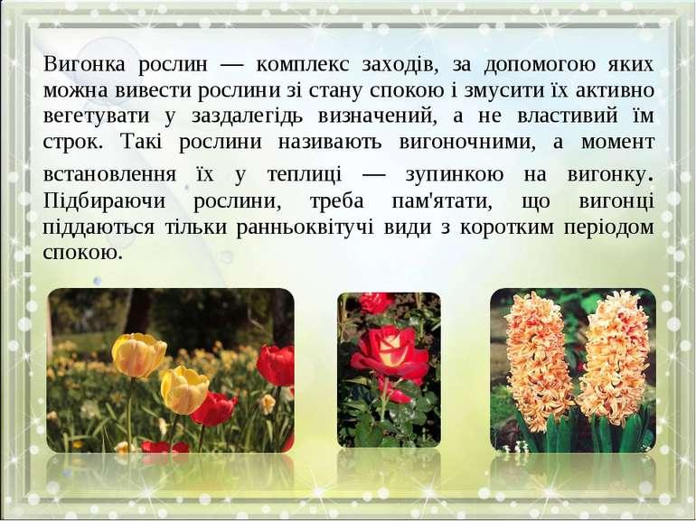 Вигонка рослин — комплекс заходів, за допомогою яких можна вивести рослини зі...