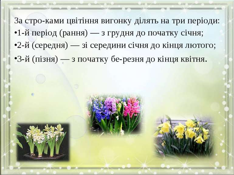 За стро ками цвітіння вигонку ділять на три періоди: 1-й період (рання) — з г...