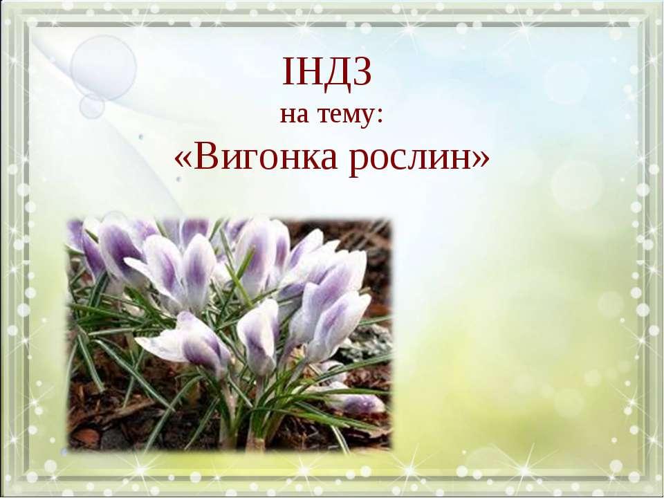 ІНДЗ на тему: «Вигонка рослин»