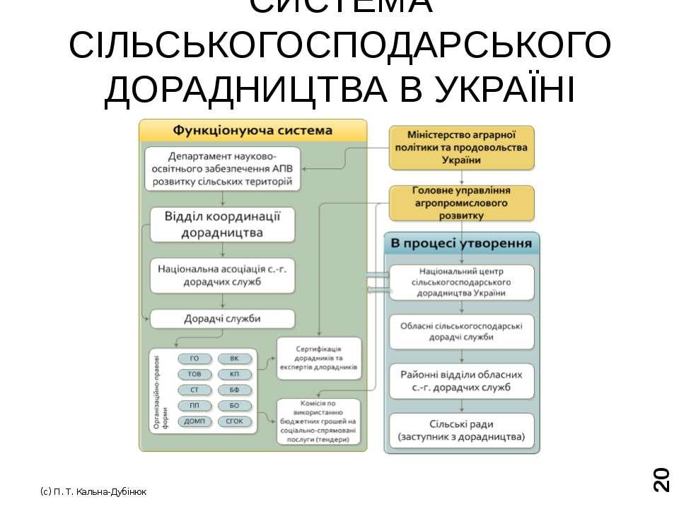 ПОПИТ ТА ПРОПОЗИЦІЯ ДОРАДЧИХ ПОСЛУГ В УКРАЇНІ (с) П. Т. Кальна-Дубінюк