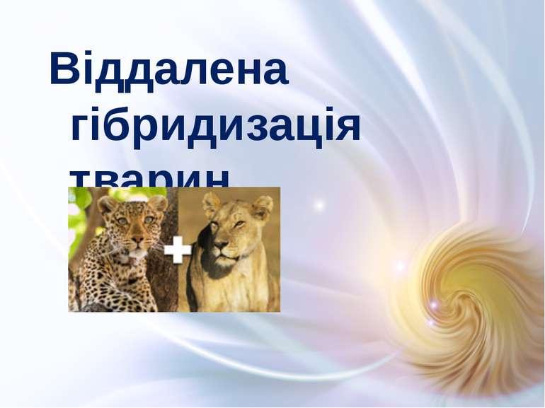 Віддалена гібридизація тварин