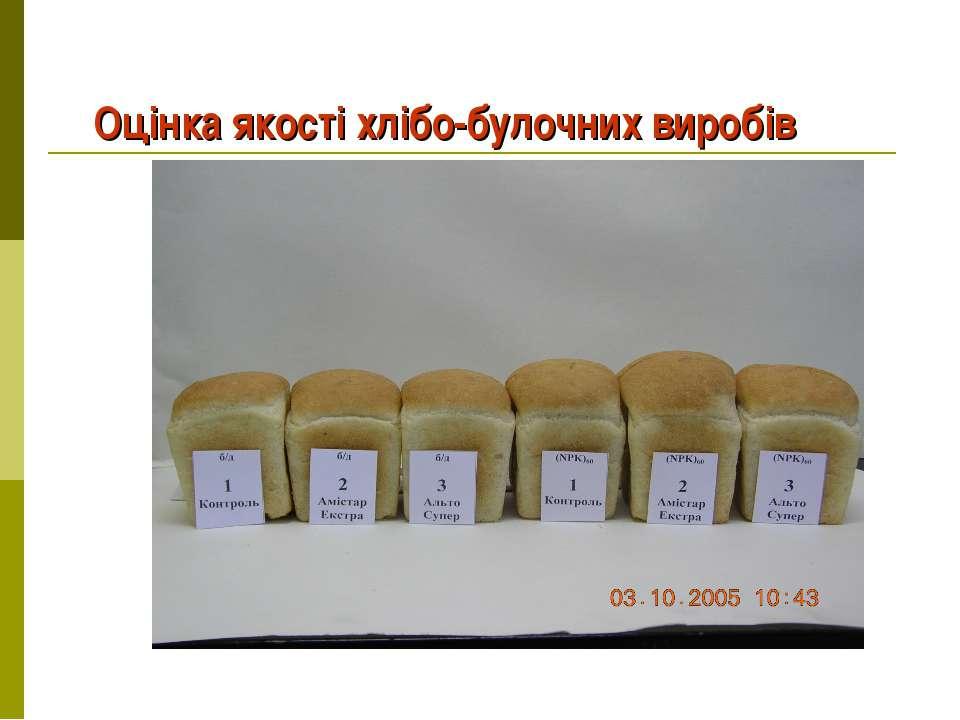 Оцінка якості хлібо-булочних виробів