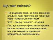 Що таке епістаз? Тип взаємодії генів, за якого ген однієї алельної пари пригн...