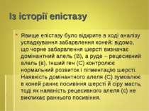 Із історії епістазу Явище епістазу було відкрите в ході аналізу успадкування ...
