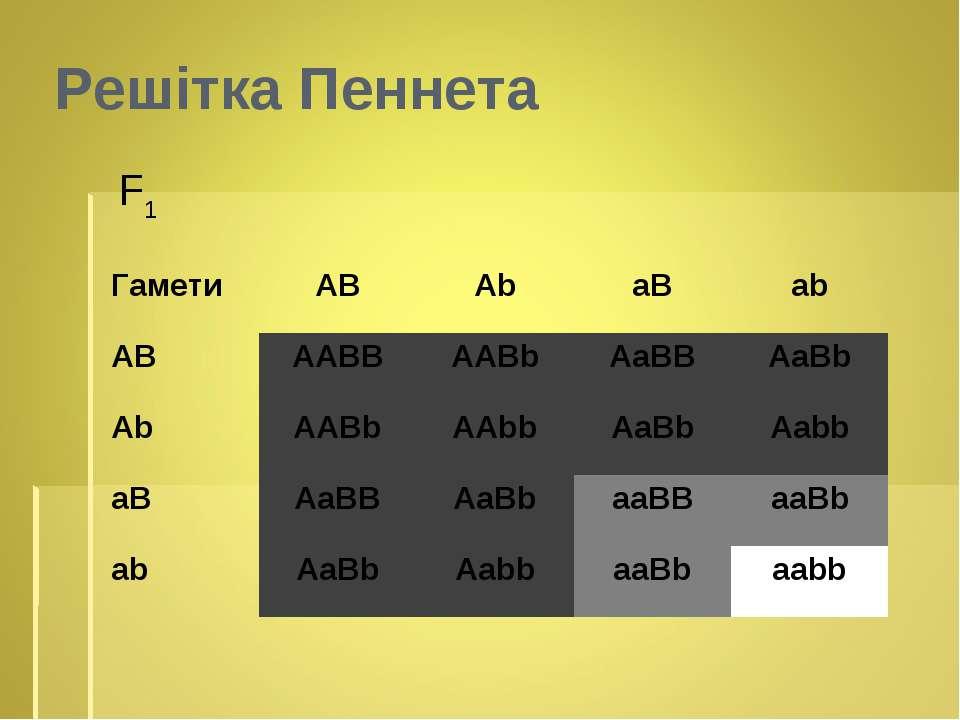 F1 Решітка Пеннета Гамети АВ Ab aB ab AB AABB AABb AaBB AaBb Ab AABb AAbb AaB...