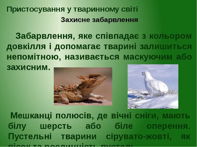 Захисне забарвлення Пристосування у тваринному світі Забарвлення, яке співпад...