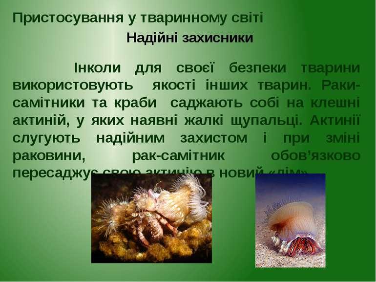 Інколи для своєї безпеки тварини використовують якості інших тварин. Раки-сам...