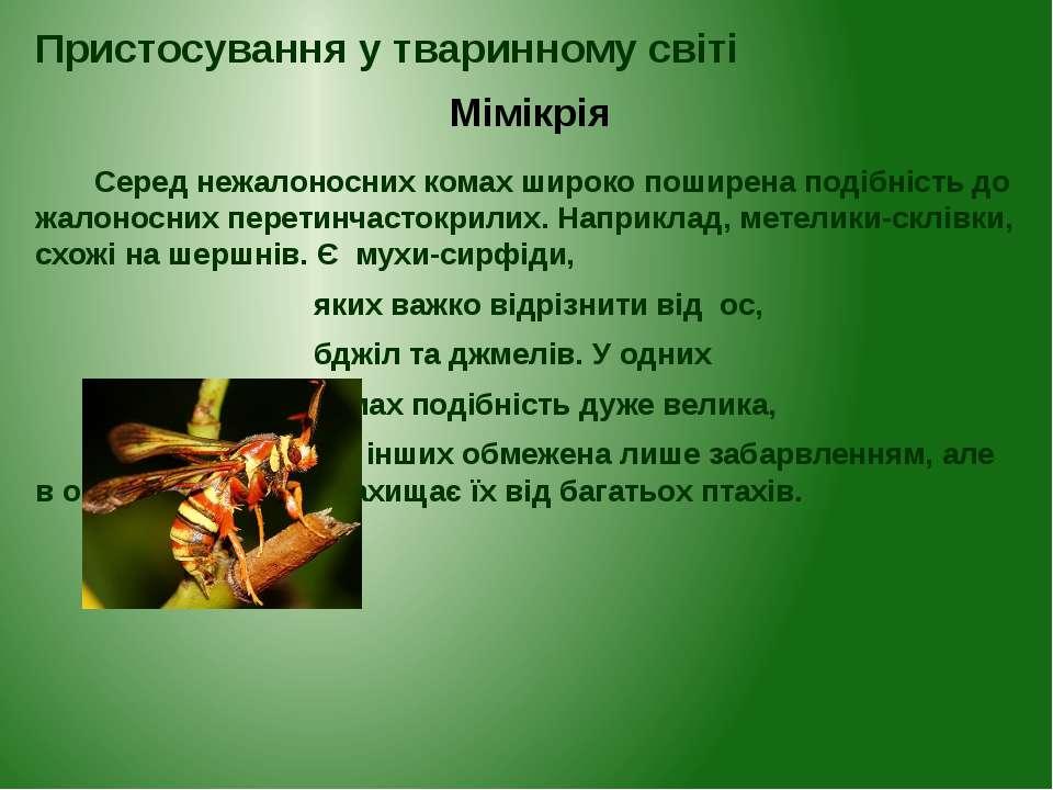 Серед нежалоносних комах широко поширена подібність до жалоносних перетинчаст...