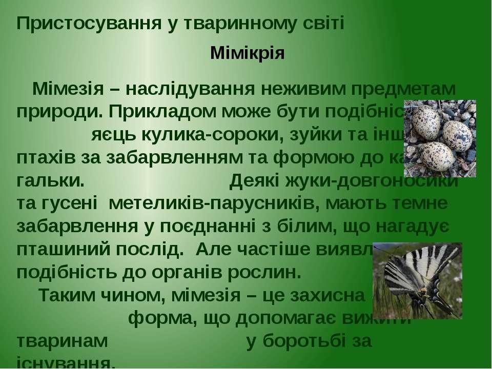 Пристосування у тваринному світі Мімікрія Мімезія – наслідування неживим пред...