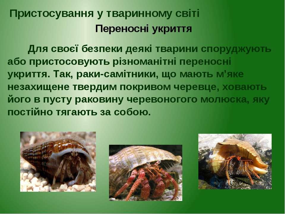 Для своєї безпеки деякі тварини споруджують або пристосовують різноманітні пе...