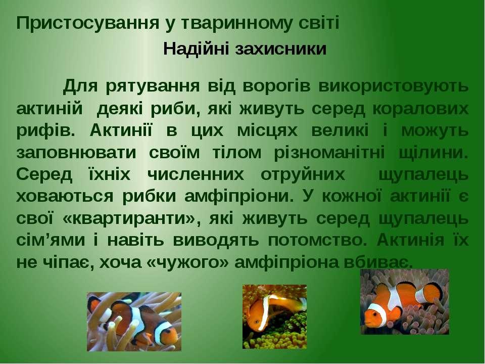 Для рятування від ворогів використовують актиній деякі риби, які живуть серед...