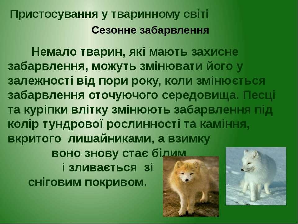 Немало тварин, які мають захисне забарвлення, можуть змінювати його у залежно...