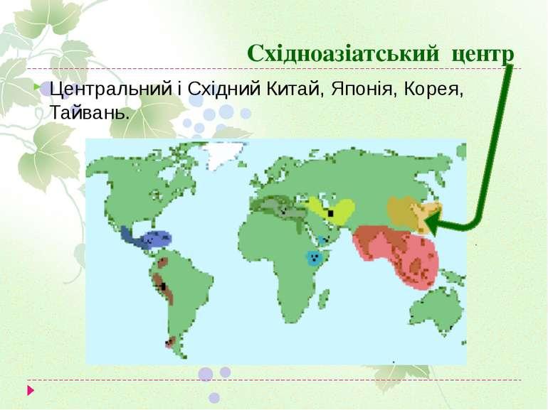 Східноазіатський центр Центральний і Східний Китай, Японія, Корея, Тайвань.